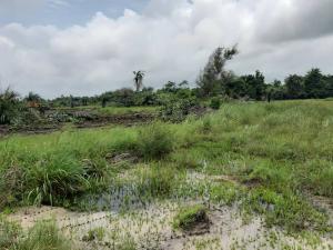 Mixed   Use Land Land for sale Igbogun Ise town Ibeju-Lekki Lagos
