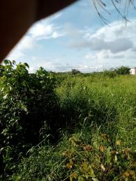 Mixed   Use Land Land for sale - Orimedu Ibeju-Lekki Lagos