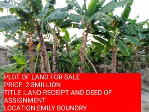 Mixed   Use Land Land for sale EMILY ESTATE  Igbogbo Ikorodu Lagos