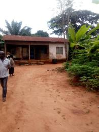 1 bedroom mini flat  Residential Land Land for sale Amovu ,Amawbia. Awka South Anambra