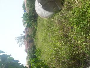 Land for sale Eko Akete LBS Ibeju-Lekki Lagos