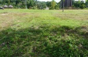 Land for sale Omole Phase 2 Omole phase 2 Ogba Lagos