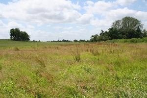 Mixed   Use Land Land for sale Abuja quarters new layout Ward 9 Uhie community opp Okha 2 junction Ikpoba Okha LGA Benin City Benin-Sapele road. Edo State Nigeria.  Ukpoba Edo