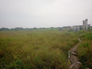Residential Land Land for sale Falling Rain estate Ogombo Ajah Lagos
