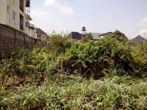 Residential Land Land for sale Off Paddy Chuka Street Ago palace Okota Lagos