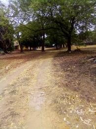 Residential Land Land for sale ALI AKILU ROAD KADUNA NORTH.                        Kaduna North Kaduna