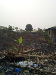 Residential Land Land for sale Emily avenue  Igbogbo Ikorodu Lagos
