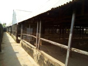 Commercial Property for sale Mahuta Kaduna South Kaduna