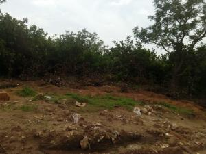 Residential Land Land for sale Abubakr Umar street, Katampe extension , Abuja Katampe Ext Abuja - 0