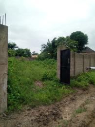 Residential Land Land for sale Asadam Road, opposite Dangote Company Ilorin. Ilorin Kwara