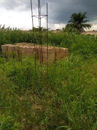 Mixed   Use Land Land for sale Elebu oja Ibadan Oyo