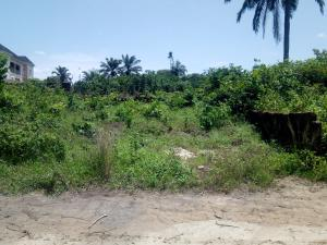 Commercial Land Land for sale Umuuchichi Aba Abia