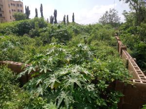 Residential Land Land for sale Adeoyo Ring Rd Ibadan Oyo