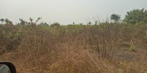 Mixed   Use Land Land for sale Along Saint Augustine University Road Epe Road Epe Lagos