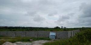 Land for sale Lagos Business School,Ajah,Lekki, Lagos Ajah Lagos