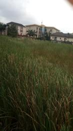 Commercial Land Land for sale No 3 Hawau Abikan Str, Chevy View Estate,  chevron Lekki Lagos