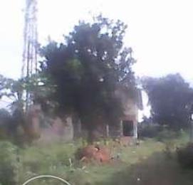 Land for sale - Abule Egba Abule Egba Lagos - 0