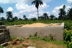 Mixed   Use Land Land for sale Abara Etche Rivers