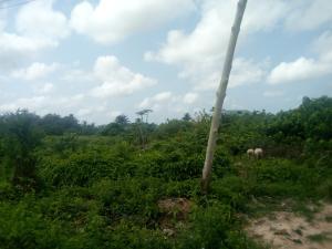 Residential Land Land for sale Iyana school okemoro ishashi Iba Ojo Lagos