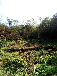 Land for sale Igiwonkogo,  federal polytechnic ado Ekiti road, Oke Ureje Ado-Ekiti Ekiti