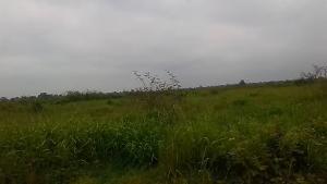 Residential Land Land for sale  Oriyanrin, Olowotedo Ibafo Obafemi Owode Ogun