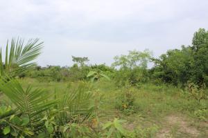 Land for sale MAYFAIR GARDEN Ibeju-Lekki Lagos
