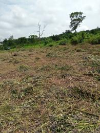 Residential Land Land for sale After Ibadan city Polytechnic Ido Ibadan  Ido Oyo
