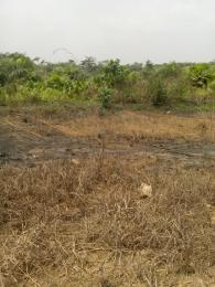 Commercial Land Land for sale Magboro Lagos/Ibadan Expressway Agbado Ifo Ogun