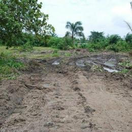 Mixed   Use Land Land for sale Lekki Epe Express Way Ilami-Ija Epe Road Epe Lagos