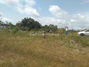 Land for sale  8 minutes drive after the prestigious La Campaigne Tropicana Beach Resort and 10 minutes drive from the Lekki Free Trade Zone  LaCampaigne Tropicana Ibeju-Lekki Lagos