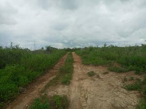 Serviced Residential Land Land for sale Magbon Town Badagry Express way Agbara Agbara Agbara-Igbesa Ogun