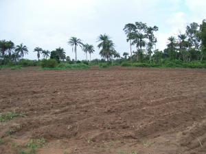 Mixed   Use Land Land for sale Jaleko Community, Isiu Ikorodu. Ikorodu Lagos