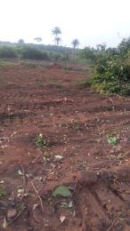 Serviced Residential Land Land for sale Mgbakwu Awka close to Anambra state poly Awka South Anambra