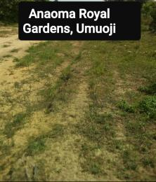 Mixed   Use Land Land for sale Akanabo Village Umuoji.  Idemili North Anambra