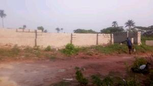 Residential Land Land for sale Behind Asaba Airport and 2nd Niger Bridge proposed link Road Aniocha South Delta