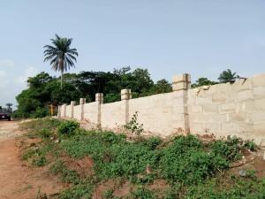 Residential Land Land for sale Behind Asaba Airport and 2nd Niger Bridge Asaba Delta