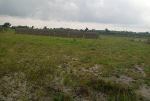 Serviced Residential Land Land for sale Behind Asaba Airport and 2nd Niger Bridge Proposed Link Road Asaba Delta