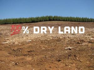 Mixed   Use Land Land for sale Igbogun Community Ibeju Lekki. Ibeju-Lekki Lagos