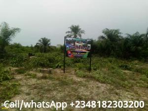 Serviced Residential Land Land for sale Ebute lmedu Village Ise town Ibeju-Lekki Lagos