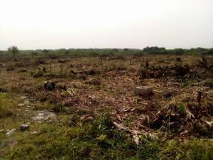 Residential Land Land for sale Ibeju Agbe Town  Ibeju-Lekki Lagos