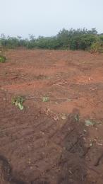 Serviced Residential Land Land for sale Along secondary technical school road Owerri Imo