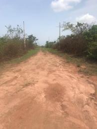 Mixed   Use Land Land for sale Jewel crescent Ikorodu Ikorodu Lagos
