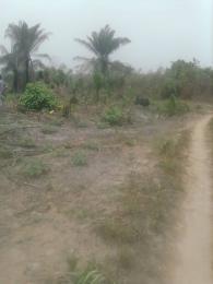 Land for sale Ologede Village Eleranigbe Ibeju-Lekki Lagos