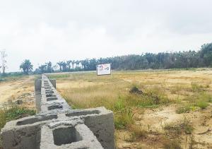 Land for sale okegun Eleranigbe Ibeju-Lekki Lagos
