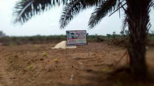 Land for sale Irete Owerri Imo