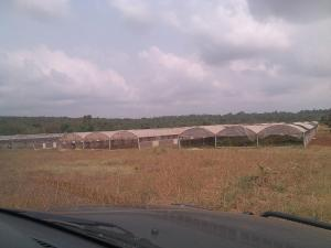 Commercial Land Land for sale Along Sagamu -Iperu Road  Sagamu Sagamu Ogun