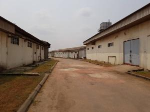 Commercial Property for sale expressway Ojokoro Abule Egba Lagos - 10