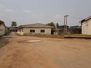 Commercial Property for sale expressway Ojokoro Abule Egba Lagos - 13