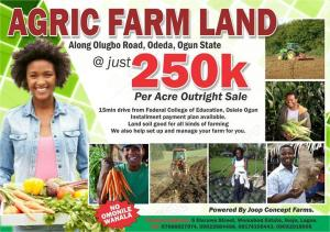 Commercial Land Land for sale Odeda Village Alabata Abeokuta Ogun