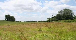 Land for sale  Abraka Road Oredo Edo